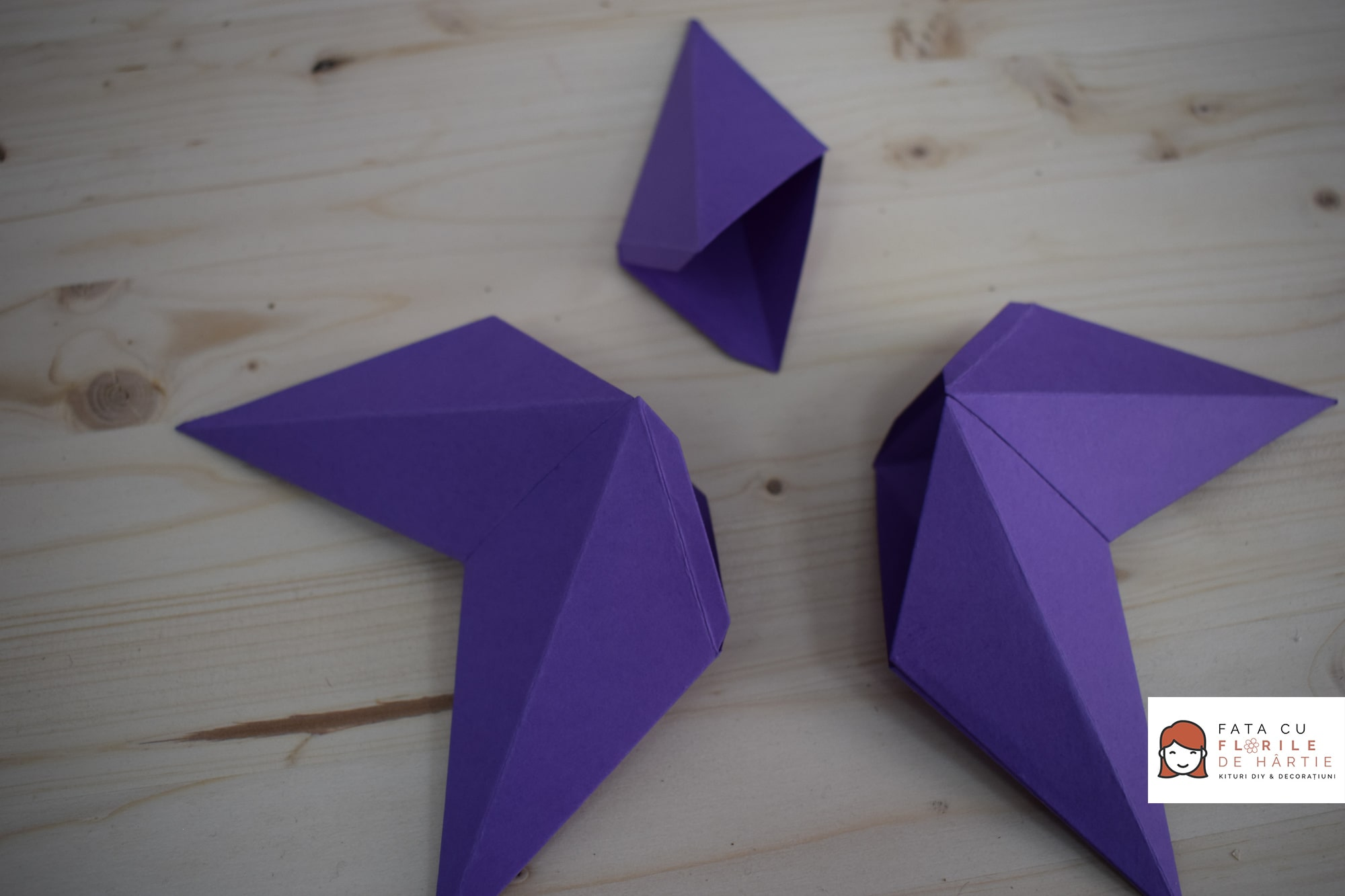 Tutorial Stea 3D de Hartie, cu Sizzix - Vezi toti pasii pe www.fatacufloridehartie.ro